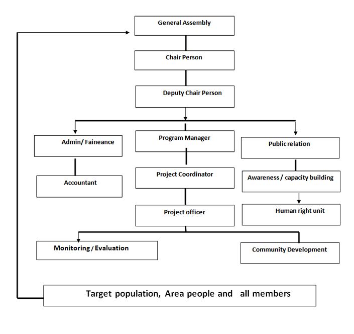 CDF - Organizational Structure